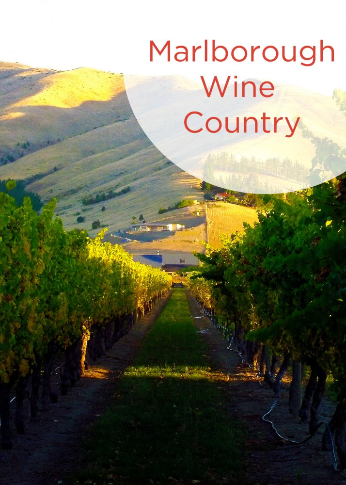 Marlborough Wine Country Pinterest