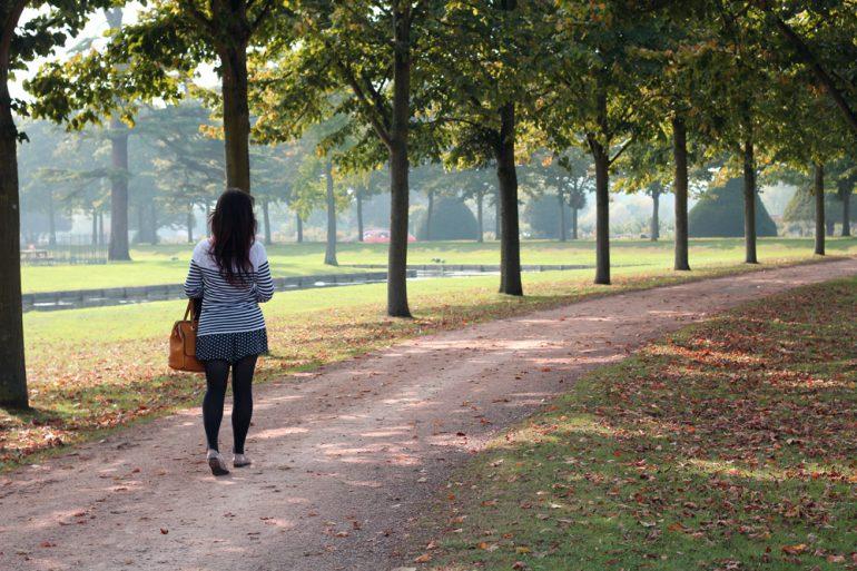 The grounds at Hampton Court Palace