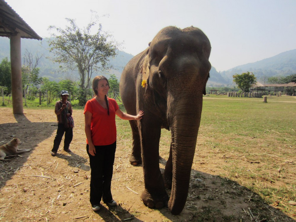 With Granny Elephant