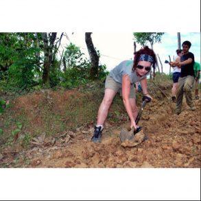 tbt digging
